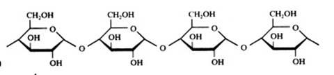 A Carboidratos Sacarídeos