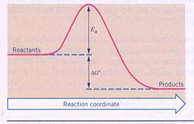 vijf verschillende atoomsoorten